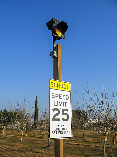 Carmanah Solar LED School Zone Beacons Enrolled in Baton Rouge Safety Improvements