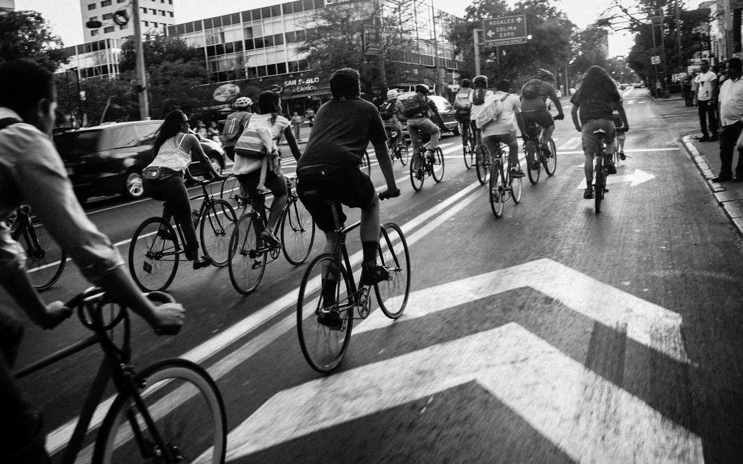 The Bicycle and Pedestrian Program