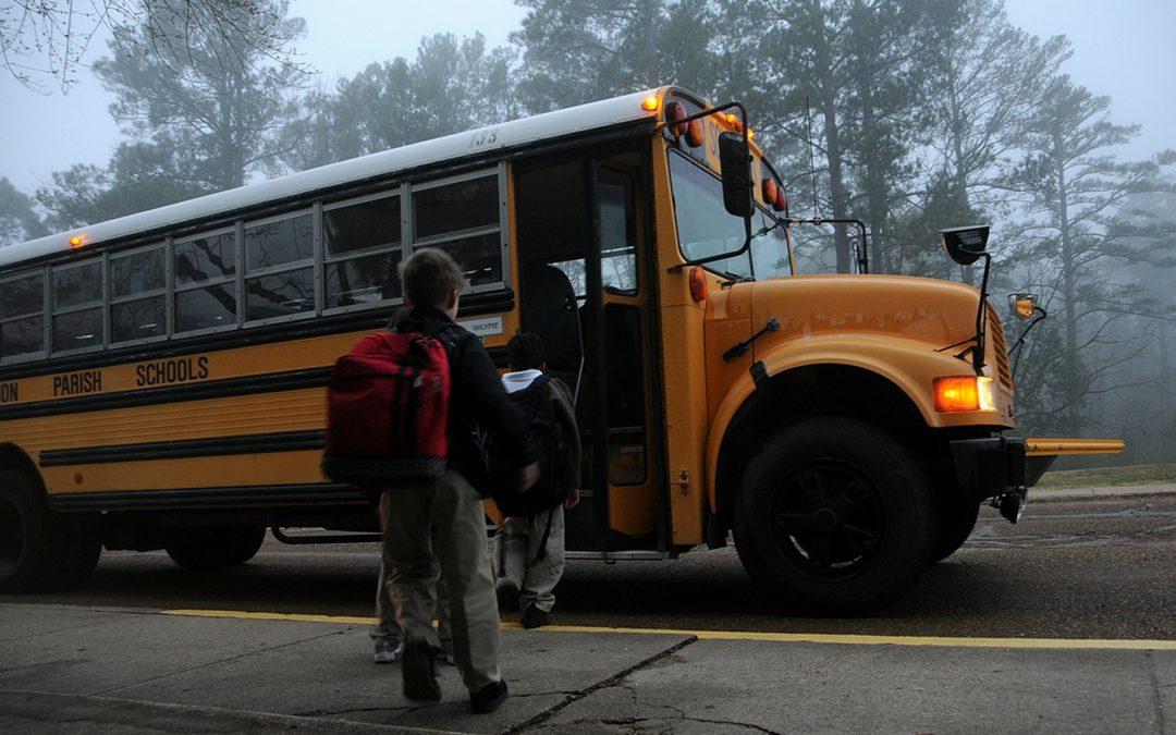 Safe Journeys to School Report Spurs Crosswalk Safety Action in St. Albert